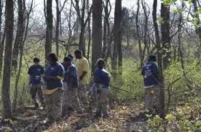 Jop Point volunteers team up with land trust and remove invasives