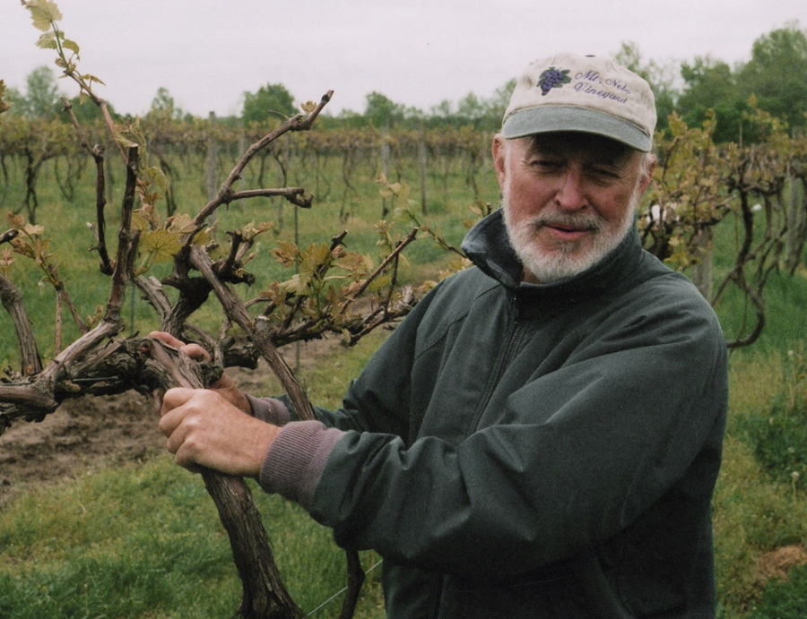 Tom Vernon showing vines to Greenbelt Land Trust board